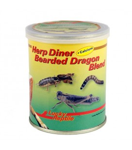 Lucky Reptile - Herp Diner Bearded Dragon Blend 70 gr.