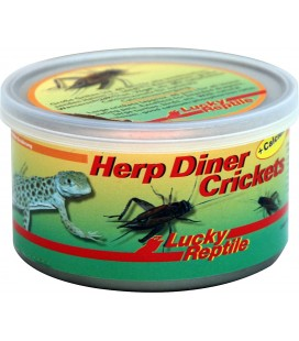 Lucky Reptile - Herp Diner Crickets Large 35 gr.
