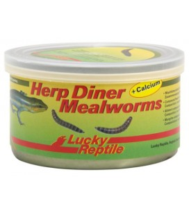 Lucky Reptile - Herp Diner Mealworms 35 gr.