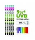 Neon T8 5% UVB